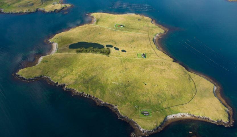 linga island elzocco