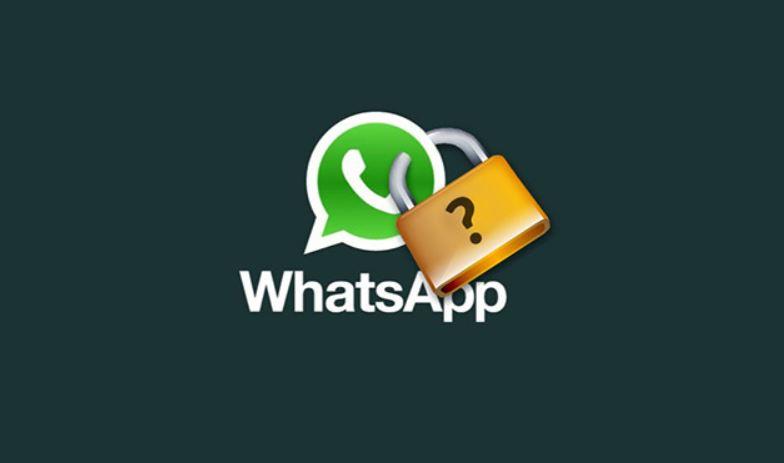seguridad whatsapp elzocco