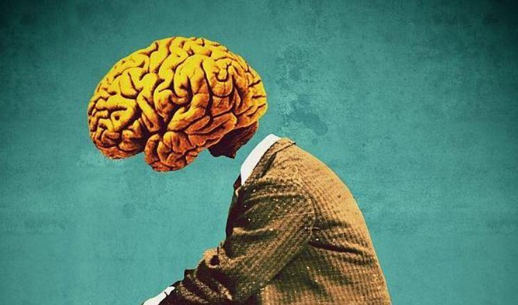 tumor cerebral elzocco