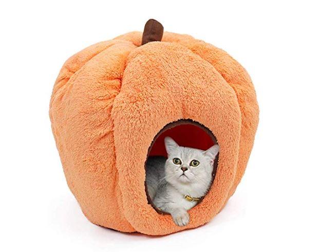 casa para gatos de Halloween