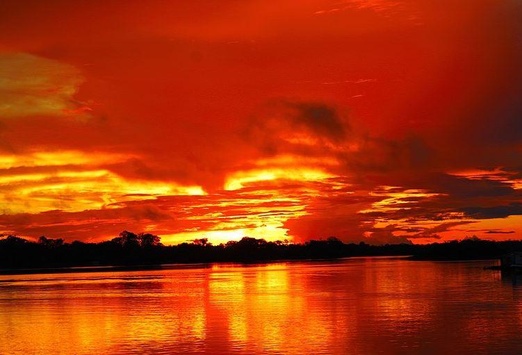 incendios forestales en Amazonia