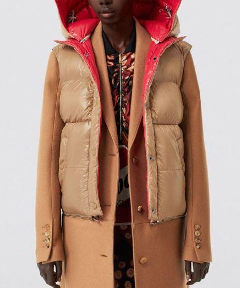 híbrido de abrigo