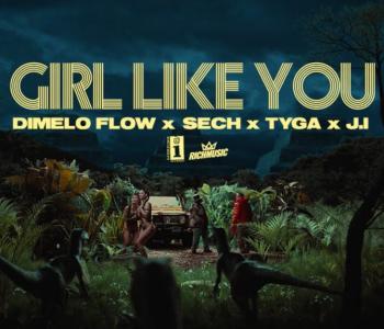 girl like you de dimelo flow