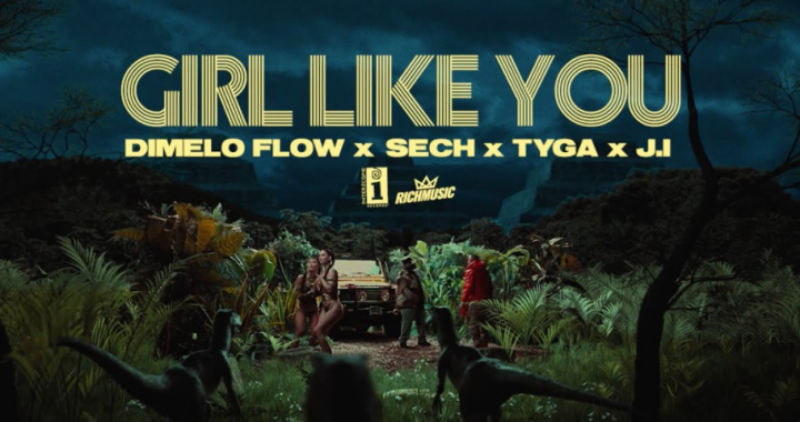 girl like you de dimelo flow