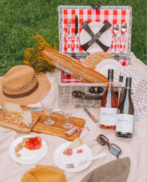 Azpilicueta picnic