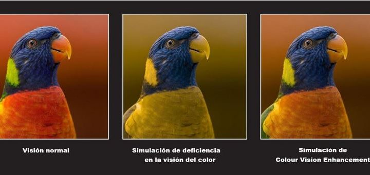 personas con deficiencias en la visión del color