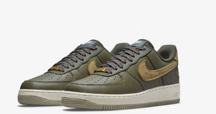 Air Force 1 '07 LX Turtle